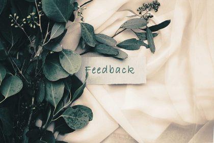 juta2017-feedback-leafes-jazmin-quaynor